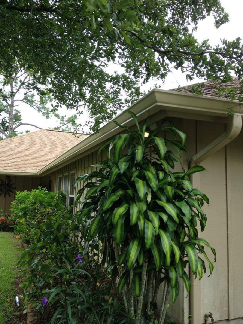 gutter-maintenance-west-palm-beach-fl