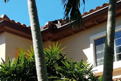 Replace-Your-Gutters