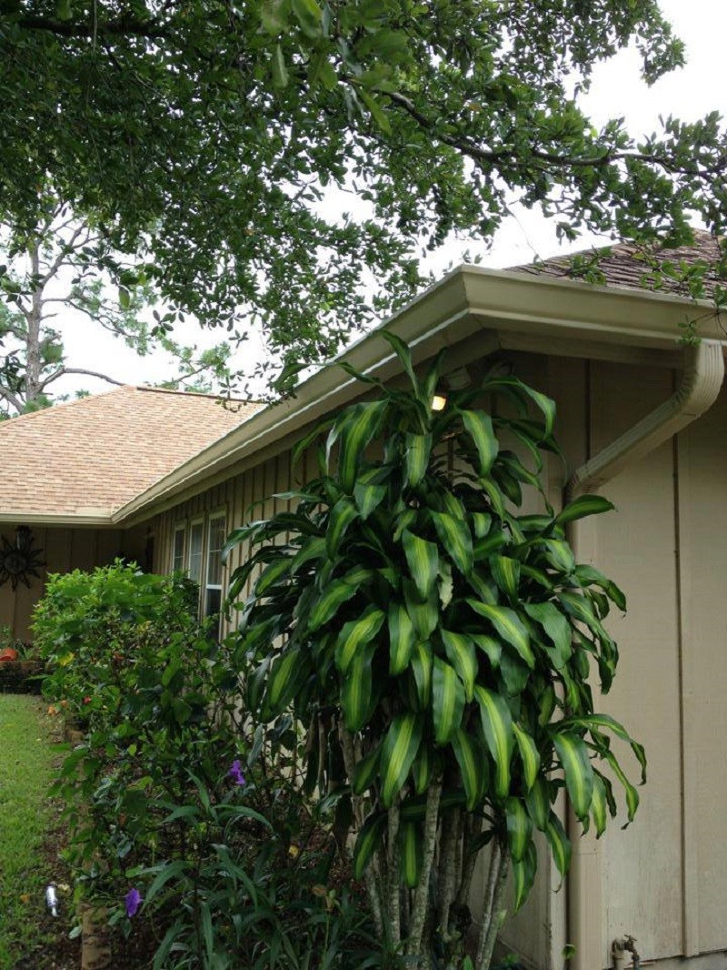 gutter maintenance west palm beach fl